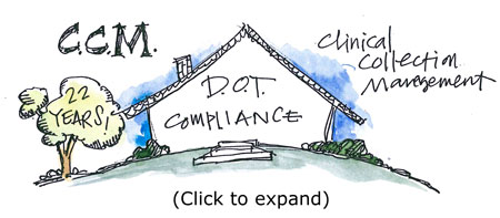 dot-compliance-thumb